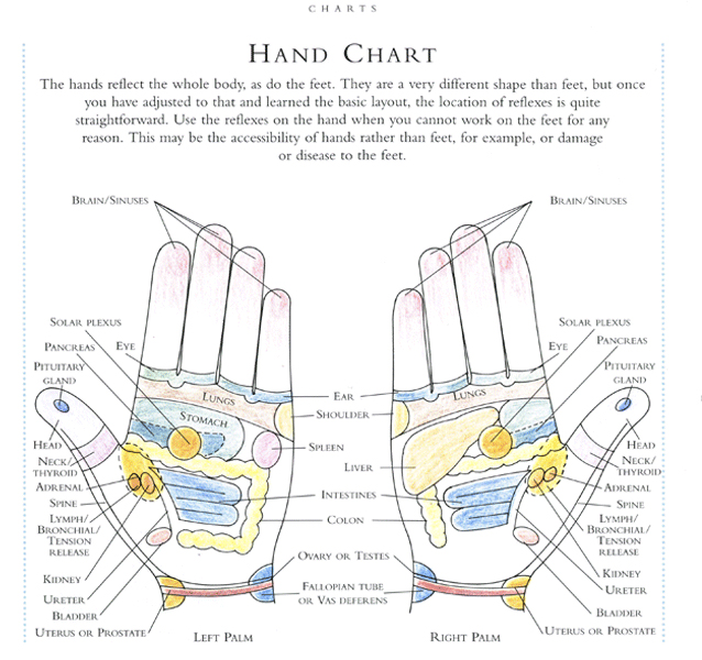Reflexology Benefits | Treatment and Holistic Coaching Culver City